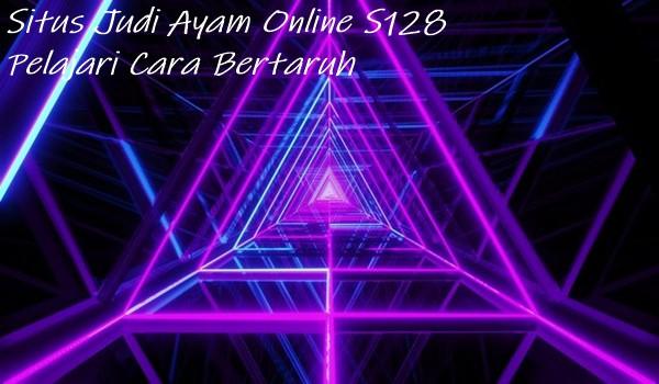 Situs Judi Ayam Online S128 Pelajari Cara Bertaruh
